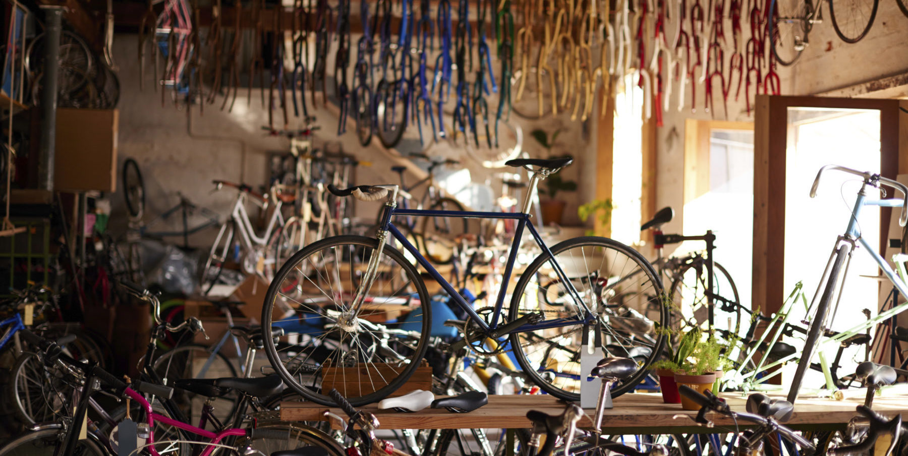 Strategies for Evolving Bicycle Retailer